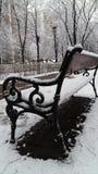 冷的圣诞节12月雪树霜冬天自然白色长凳 库存照片