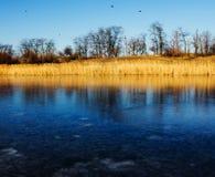 冷的天和第一冰在湖 免版税库存图片