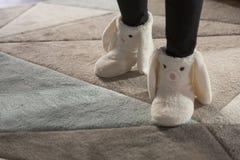 冷的季节的温暖的妇女` s室内鞋子 库存照片