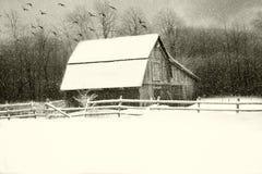 冷的斯诺伊冬天 免版税库存图片