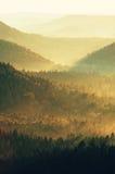 冷的早晨在夏天结束时 与强的金黄光芒和五颜六色的雾的五颜六色的夏天早晨在小山之间 库存照片