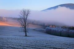 冷的早晨在Sumava国家公园、小山和村庄雾的和霜,有薄雾的看法在捷克风景,蓝色冬天场面, 免版税图库摄影
