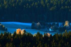 冷的早晨在Sumava国家公园、小山和村庄雾的和霜,有薄雾的看法在捷克风景,蓝色冬天场面, Tr 免版税图库摄影