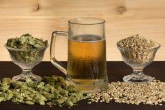 冷的杯子啤酒,用蛇麻草和麦芽 免版税库存照片
