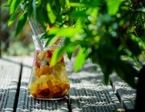 冷的果汁喷趣酒 免版税库存照片