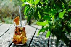 冷的果汁喷趣酒 免版税图库摄影