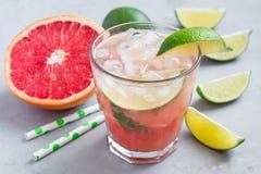 冷的桃红色鸡尾酒用新鲜的葡萄柚、石灰和冰块 免版税库存图片