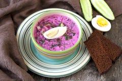 冷的汤用甜菜、黄瓜、莳萝和酸性稀奶油 免版税图库摄影