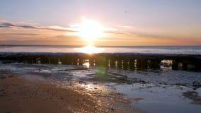 冷的波罗的海在与冰冷的海滩的冬天 影视素材
