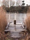 冷的湖秋天冬天风景浮船场面木树桩ree 库存图片