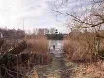 冷的湖秋天冬天风景浮船场面木树桩ree 免版税库存照片