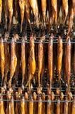 冷的熏制的鱼1 库存图片