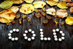 冷的秋天-药片,在黑暗的木头的叶子的概念 免版税库存照片