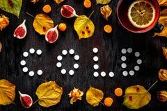 冷的秋天-药片,在黑暗的木头的叶子的概念 库存图片