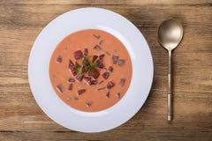 冷的罗宋汤-甜菜根汤 夏天清淡的冷的蔬菜汤用甜菜、黄瓜、radsih、土豆、鸡蛋和牛乳气酒在一木tabl 免版税库存照片