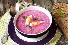 冷的蔬菜汤用甜菜、黄瓜和酸性稀奶油 免版税库存照片