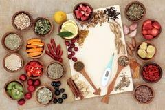 冷的补救的健康食品 免版税库存照片
