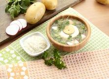 冷的酸奶汤用莳萝和卵黄质,俄国传统盘- okroshka 图库摄影