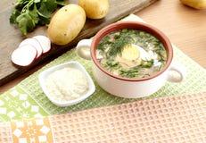 冷的酸奶汤用莳萝和卵黄质,俄国传统盘- okroshka 库存照片