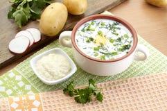 冷的酸奶汤用莳萝和卵黄质,俄国传统盘- okroshka 免版税图库摄影