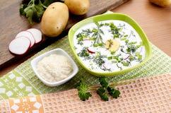 冷的酸奶汤用莳萝和卵黄质,俄国传统盘- okroshka 免版税库存照片