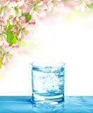 冷的饮料和春天花 苏打水 库存照片