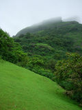 冷静绿色山 库存照片