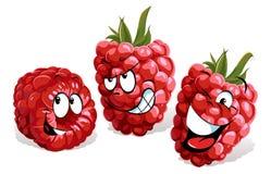 冷静莓动画片 库存例证