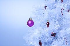 冷静蓝色圣诞节 库存图片