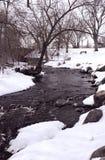 冷颤的流冬天 图库摄影