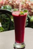 冷冻果子莓果甜深红鸡尾酒和秸杆它的 夏天点心 免版税库存照片