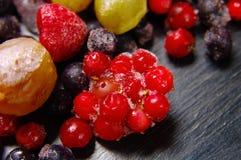 冷冻果子 库存图片