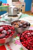 从冷冻樱桃和李子的果酱 库存照片