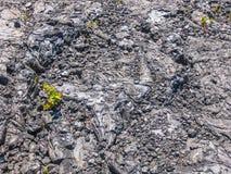 冷却的熔岩 免版税库存照片
