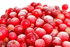 冷冻红浆果的宏观射击 免版税库存图片