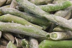冷冻绿色扁豆 库存图片
