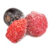 冷冻莓、黑醋栗和野草莓 免版税库存图片
