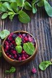 冷冻莓果、红色和黑醋栗、蓝莓和raspberr 免版税图库摄影