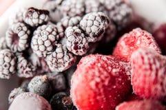 冷冻莓果关闭  免版税库存图片