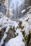 冻冰冷的积雪的瀑布在峡谷Baerenschuetzklamm 库存图片