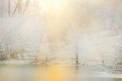 冻树和湖 免版税库存图片