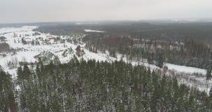 冻树空中英尺长度在雪的 降雪 苹果覆盖花横向草甸本质星期日结构树 影视素材