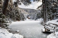 冻湖和村庄在森林里 免版税库存照片