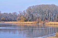 冻湖在国家公园Lobau - Donauauen 免版税库存照片