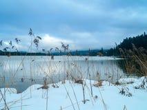 冻湖在巴伐利亚 免版税库存照片