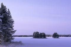 冻湖在雪的冬天 免版税库存照片