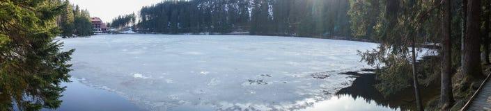 冻湖mummelsee在blackforest德国 库存照片