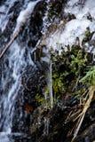 冻瀑布在奥伯斯特多夫 库存图片