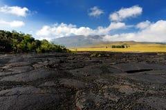 冻熔岩毛面在冒纳罗亚火山火山爆发以后的在大岛,夏威夷 免版税库存图片