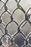 冻篱芭由用霜水晶报道的金属滤网制成,  图库摄影